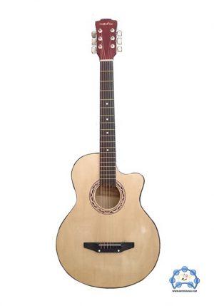 گیتار آکوستیک olive tree